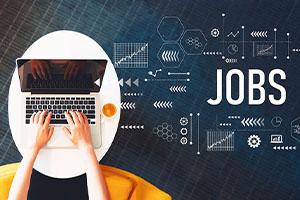 İş Bulma & Kariyer Danışmanlığı